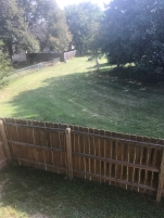 Yard fence and common area